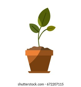 colorful silhouette of small plant in flower pot with half shadow vector illustration