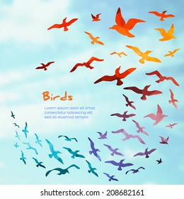 Colorful silhouettes of flying birds, vector illustration.