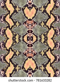 colorful snake skin texture