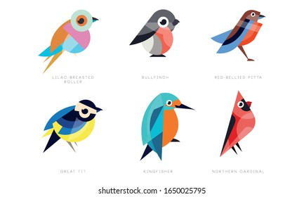 Birds Names Images Stock Photos Vectors Shutterstock