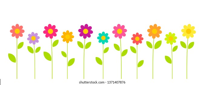 Colorful summer flowers growing in the garden on white background. Flower vector card.