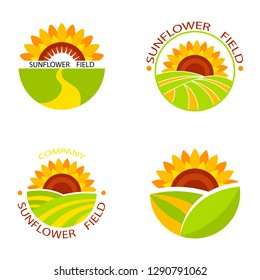Colorful Sunflower vector icons on white background.