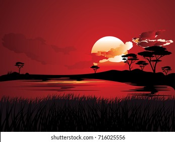 Colorful sunset scene, african landscape with silhouette of trees.