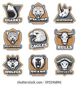 Colorful team sport animals logotypes set with mammals shark eagle heads in vintage style isolated vector illustration