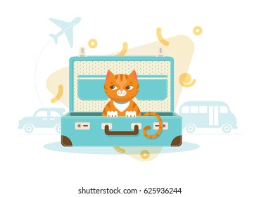 Colorful travel with pets concept of cat sitting in bag plane car and bus silhouettes vector illustration