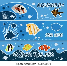 Colorful tropical fish banners templates vector illustration
