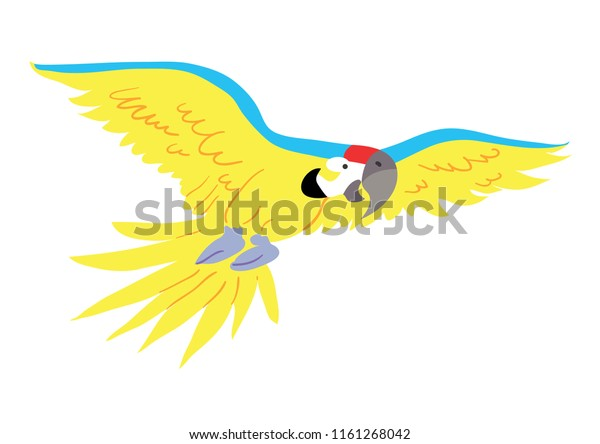 Colorful tropical macaw parrot illustration