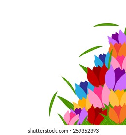 colorful tulips and green leaves  in spring season with white background