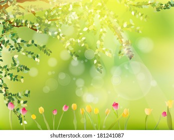 Colorful tulips in the park. And also includes EPS 10 vector