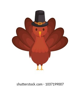colorful turkey thanksgiving over white background  vector illustration