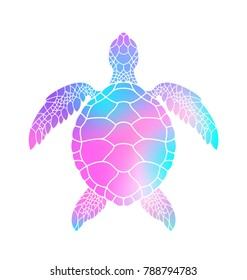 Colorful turtle. Vector illustration. Isolated turtle on white background