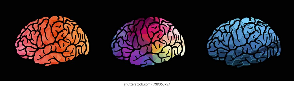 Colorful vector brain illustration