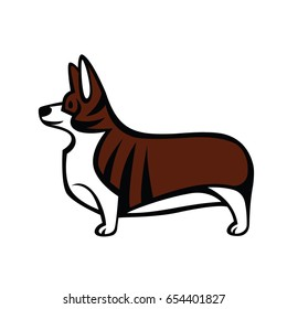 Colorful vector drawing of standing in profile tailless dog Welsh Corgi breed