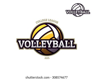 Colorful volleyball sport logo label on white background with bonus one color performance. Vector abstract illustration.