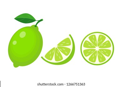 Colorful whole, half and slice lime with green leaf. Vector illustration isolated on white background.