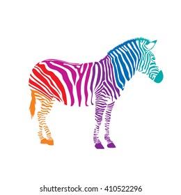 Colorful Zebra, illustration isolated on white background
