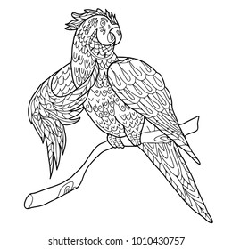 Coloring for adults. A bird, a parrot. Hand drawn. Black and white vector illustration.