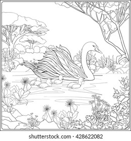 Swan Coloring Page Hd Stock Images Shutterstock