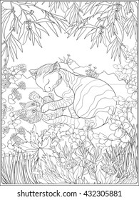 coloring book adult older children 260nw