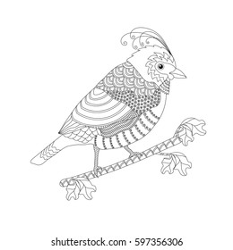 Coloring book for adults and children. Fantasy bird on a branch. Black and white vector illustration.