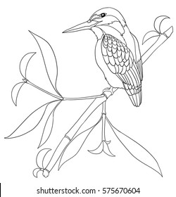 Bird Line Drawing Images Stock Photos Vectors Shutterstock