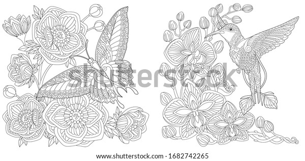 Coloring book. Butterfly and peony flowers. Hummingbird and orchid flower. Line art design for adult or kids colouring page in zentangle style. Vector illustration.