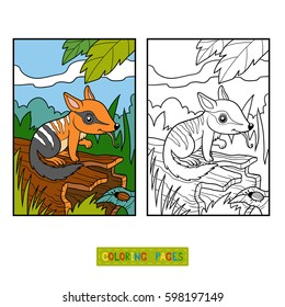Coloring book for children, Numbat with background