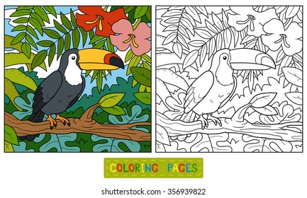 Coloring book for children (toucan and background)