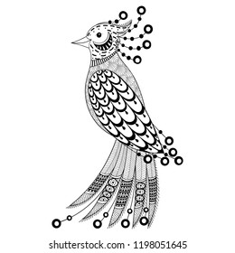 Coloring Book cover. Adult coloring pages with zentangle detailes. Exotic bird for colouring antistress drawing. Hand drawn monochrome sketch with doodle elements, lace ornaments. Vector animal.