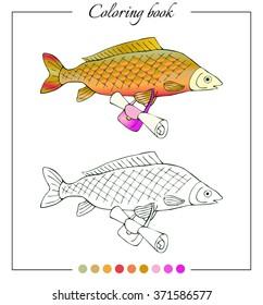 Zoology Fish Anatomy Stock Vector 114115534 - Shutterstock