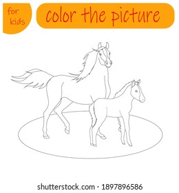 coloring book for kids, farm animal horse and foal
