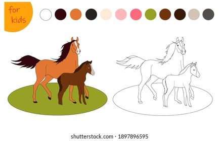 coloring book for kids, farm animal horse and foal, coloring by colors