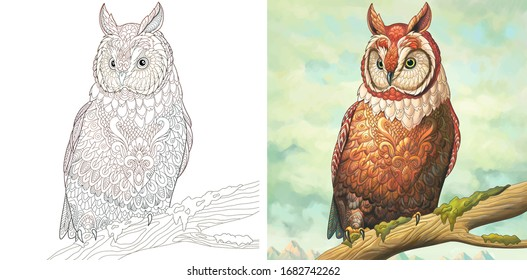 Coloring book. Owl bird. Colorless and color sample painted in watercolor imitating style. Coloring design with doodle and zentangle elements. Vector illustration.
