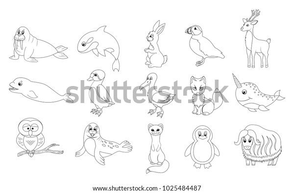 42 Arctic Animals Coloring Book HD