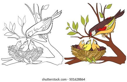 Coloring book page bird and nest with chicks. Hand drawn illustration for coloring book with sample.