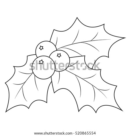 Coloring Book Page Christmas Holly Berry Stock Vector ...