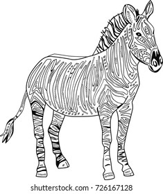 Coloring book page with doodle hand drawn zebra.