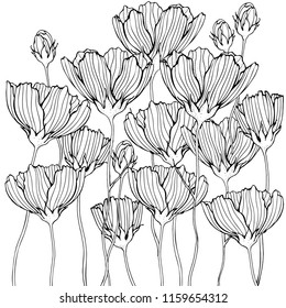 Coloring book page with flowers and leaf. Black and white vector illustration. Doodle, hand drawn, zen art, anti stress.