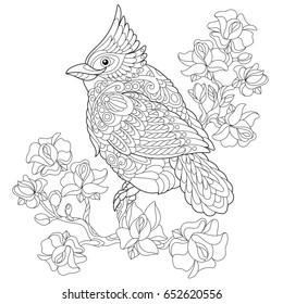 Cardinal Bird Flying Images, Stock Photos & Vectors ...
