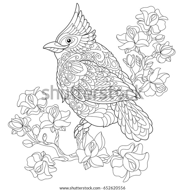 Coloring Book Page Northern Red Cardinal Stock Image ...
