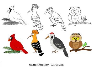 Smiling Bird Images Stock Photos Vectors Shutterstock