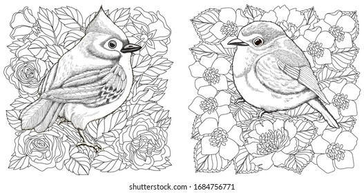 Coloring book. Two engraved birds on flower background. Line art design for adult or kids colouring page in zentangle style. Vector illustration.