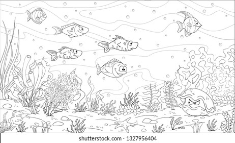 Coloring book underwater landscape. Hand draw vector illustration with separate layers.