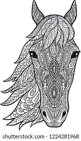 Coloring. Horse head