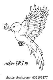 coloring illustration with flying bird