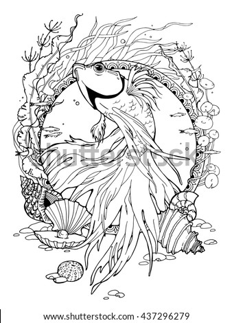 betta fish coloring pages Coloring Page About Betta Fish Different Stock Vector (Royalty  betta fish coloring pages