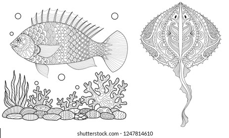 Coloring page for adult colouring book. Underwater world with stingray shoal, tropical fishes and ocean plants. Antistress freehand sketch drawing with doodle and zentangle elements.