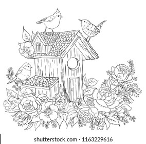 coloring page adults birds birdhouse 260nw