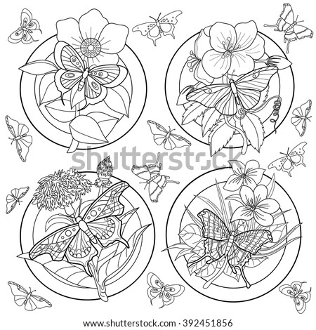 Coloring Page Adults Butterflies Flowers Stock Vector Royalty Free