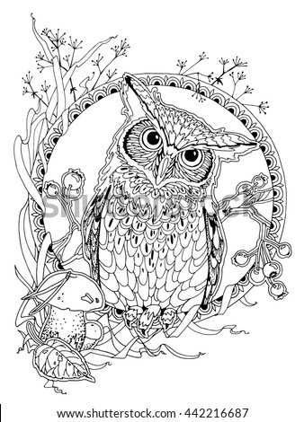 Adult Coloring Pages Owl Awesome Photos 12 Free Owl Coloring Pages